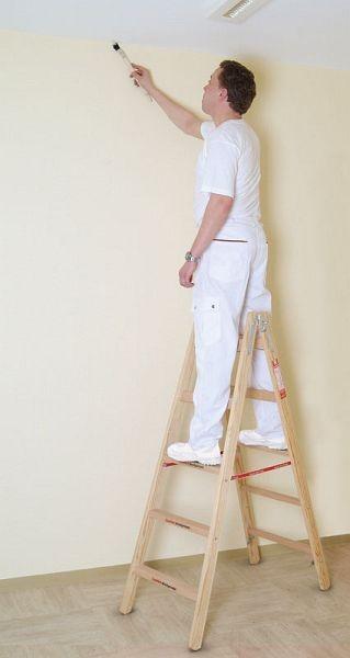 Echelle à barreaux en bois Euroline avec barreau et crochet à seau grand confort, standard avec sac de rangement