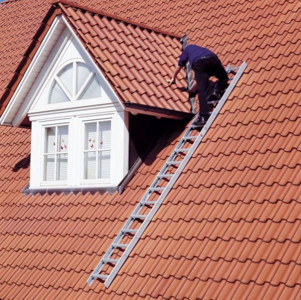 Echelle de toit en aluminium Euroline